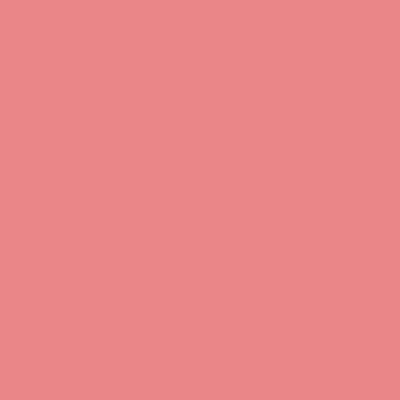 Revlon Colorstay Lipliner Nuanta Blush